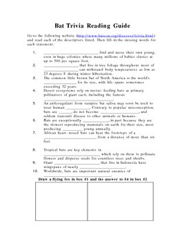 Bat Trivia Reading Guide