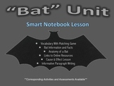 Bat Unit- Smart Notebook Presentation