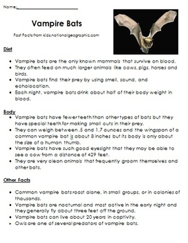 Bat Unit Stellaluna Bats Fiction and Nonfiction