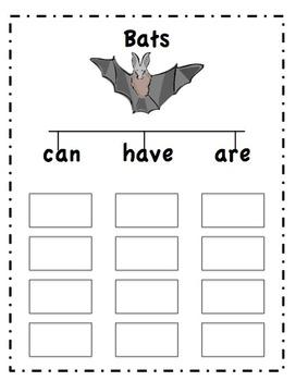 Bat Unit of Study