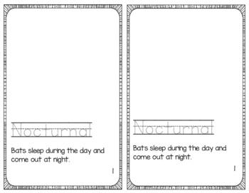 Bat Vocabulary Book