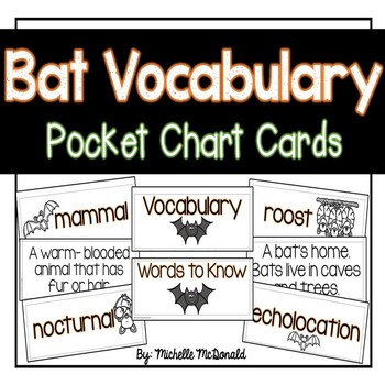 Bat Vocabulary Cards: Pocket Chart Terms