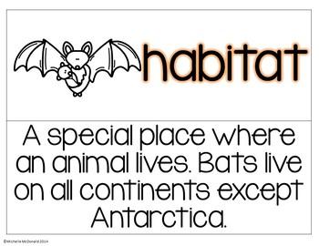 Bat Vocabulary Cards: Pocket Chart Terms