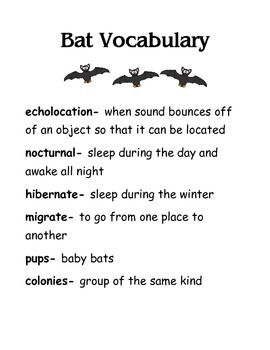 Bat Vocabulary Words