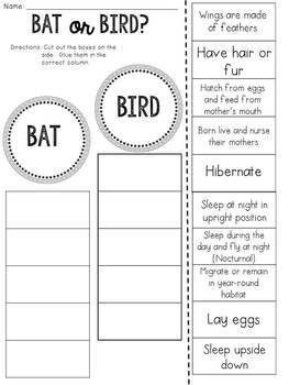 Bat or Bird? Cut and Paste Sorting Activity