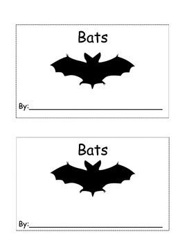 Bat reader