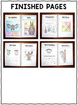 Bat Interactive Notebook Activities