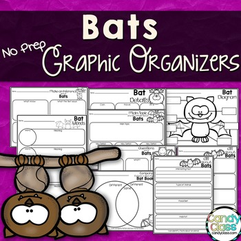 Bats Graphic Organizers for Any Bat Non-Fiction Book