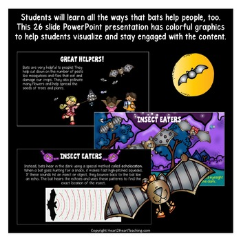 All About Those Batty Bats PowerPoint