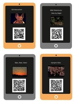 Bats!  7 QR Codes and Response Sheets