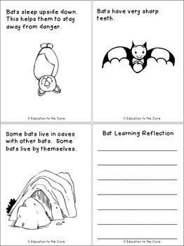 Bats Mini Book