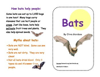 Bats! A Mini Book with Diagram and Fact & Opinion Activity