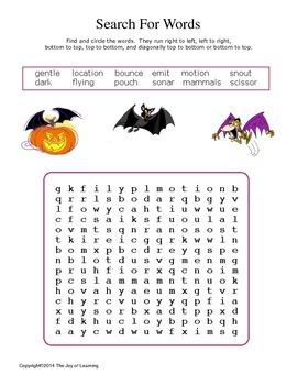 About Bats Activity Fun