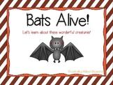 Bats Alive! Instructional PowerPoint