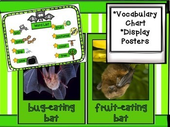 Bats: Non-fiction Song & Unit
