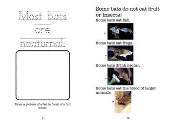 Bats: An Informational Activity Book
