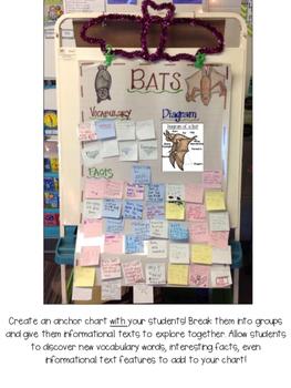 Bats! (An informational mini-unit)