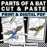 Parts of a Bat Worksheets for Stellaluna Activities Halloween Unit