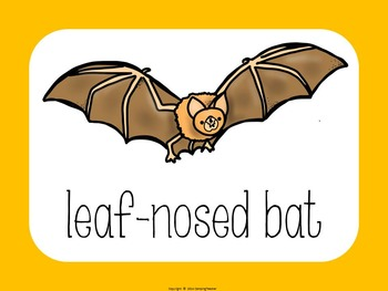 Bat Activities Book to Cut and Create, Matching Cards for Centers, and Posters