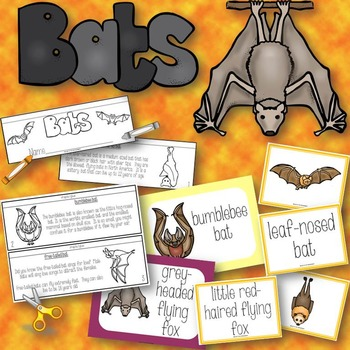 Bat Activities Book to Cut and Create, Matching Cards for