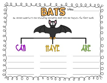 Bats (Can, Have, Are)