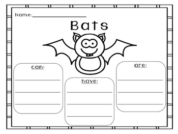 Bats: Can, Have, Are