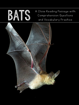 Bats Close Reading Practice