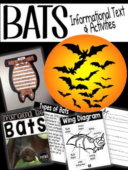 Bats - Common Core Non-fiction Unit (reading & writing)