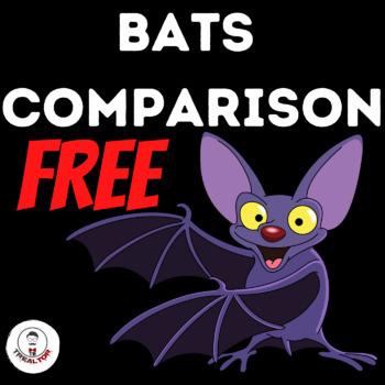 Bats Comparison Third Grade  All About Bats  Happy Bats Day!!