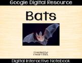 Bats Digital Activities Paperless Google Drive Resource