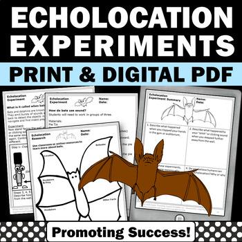 Bats and Stellaluna, Echolocation Science Experiment, Halloween Activities