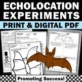 Echolocation for Bats & STEM Activities for Halloween Science Experiments