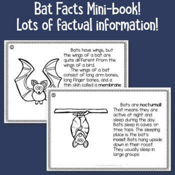 Bats Informational Text Mini-book