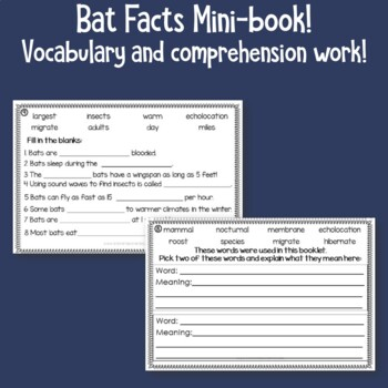 Bats Informational Text Mini-book