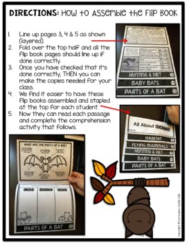 Bats Flip Book {Reading Comprehension & Craft}