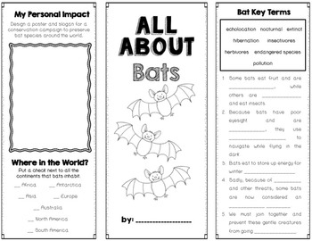 Bats Foldable Brochure Research Project, Using Informational Text, Vocabulary
