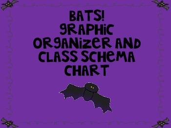 Bats! Graphic Organizer and Class Schema Chart