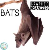 Bats Graphic Organizers: Fact Writing, Organizers, Nonfiction Resource