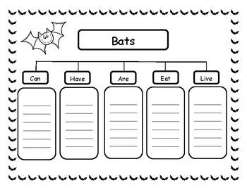 Bats Graphic Organizers
