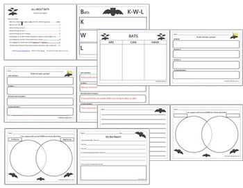 Bats Graphic Organizers, Writing Paper, Research Paper Common Core