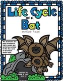 Bats Informational Book Study