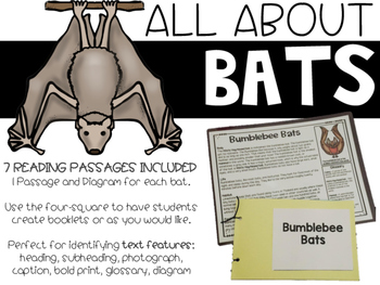 Bats | Informational Passages & Diagrams