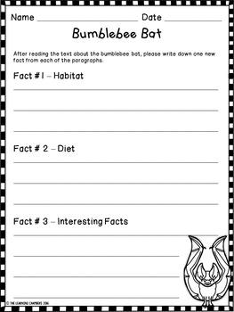 Bats Informational Texts: Main Idea, Comprehension Questions, Facts