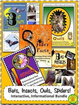 Bats, Insects, Owls, Spiders, Bat Posters Bundle