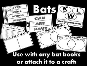 Bats Interactive Science Notebook Organizers