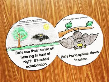 Bats Kindergarten Interactive Book