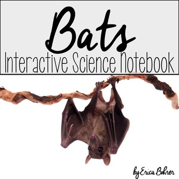 Bats Interactive Science Notebook