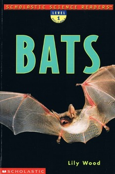 Bats (Lily Wood) Comprehension Test