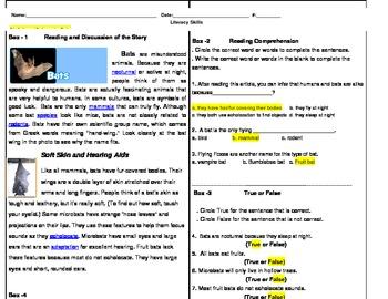 Bats - Literacy Assessment