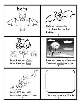 Bats Mini-Book